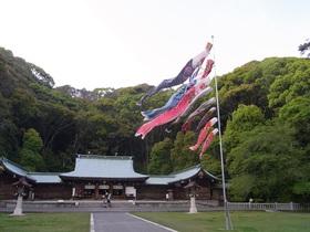 護国神社の鯉のぼり